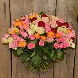 100 rožių